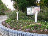 交差点花壇2009年11月9日