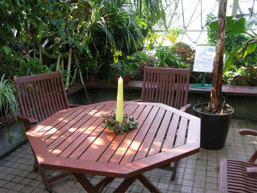 温室のテーブル