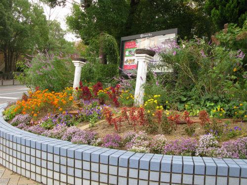 2011年10月30日の花壇