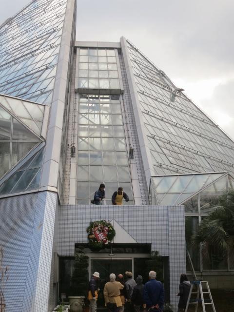 温室入口の大リース