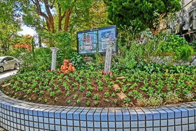 2014年11月3日植え付け直後の交差点花壇