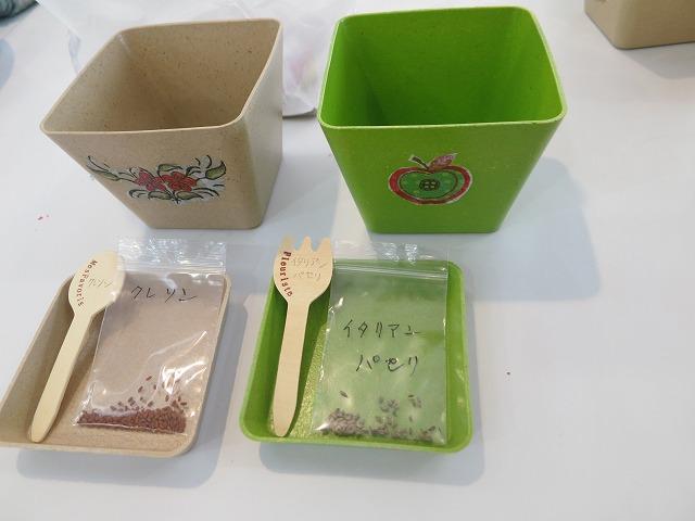 デコパ―ジュした鉢に種まき