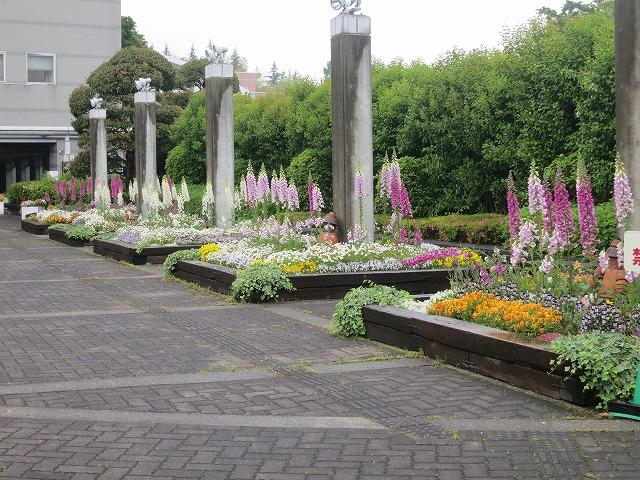 2014年5月15日の市役所花壇